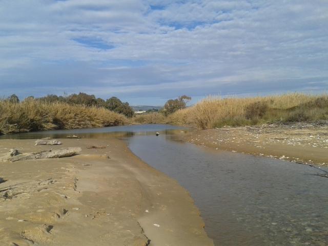 """Riserva Naturale """"Macchia Foresta del fiume Irminio """""""