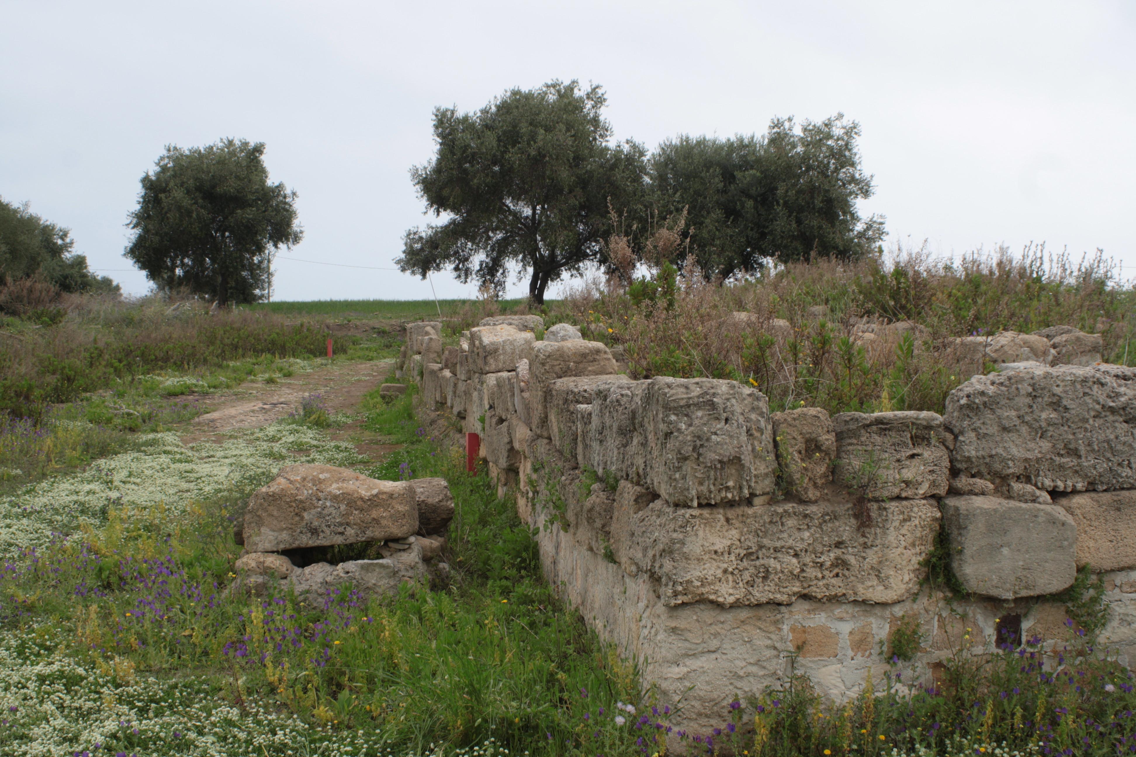 Pomeriggio a Megara Hyblaea: un interessante percorso siciliano
