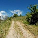 Sentiero Pomerio