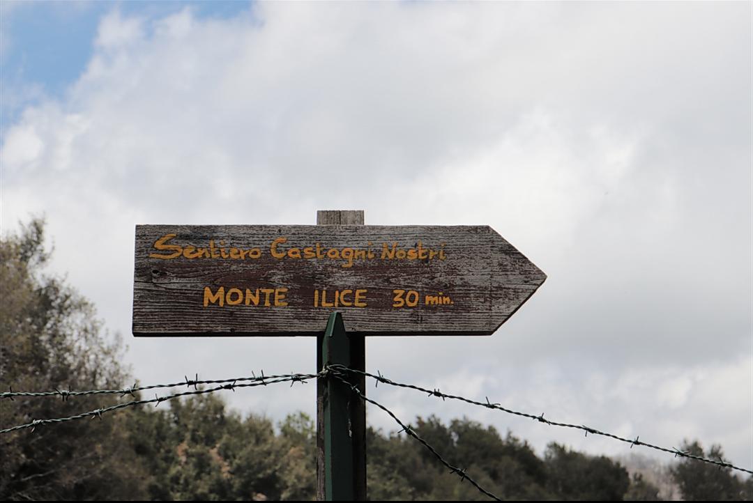 Camminata pomeridiana su Monte Ilice – Domenica 4 Maggio 2019